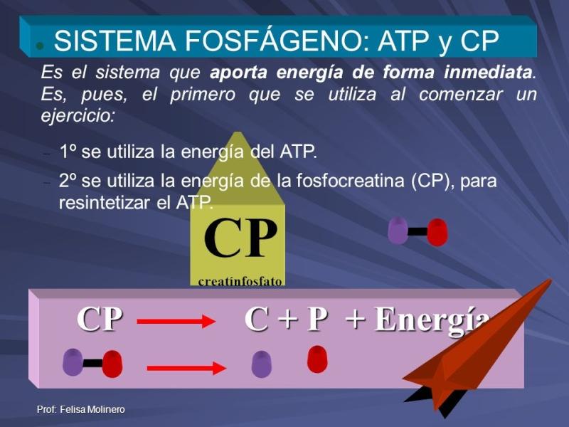 Bioenergia y sistemas energeticos Slide_10