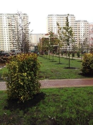 Фотографии района Бутово парк Rco6ma10
