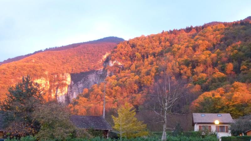 l'automne arrive... - Page 6 Tuxpi_10