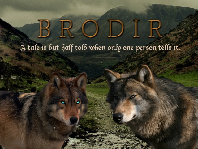 Brodir