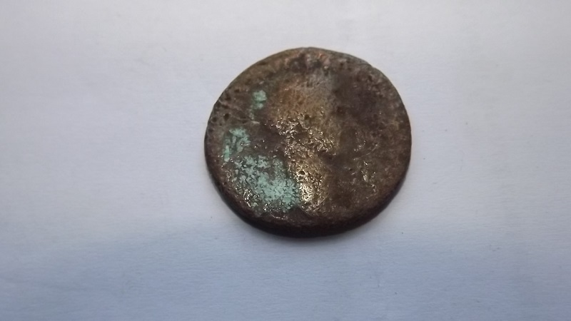 identification 4 Dscf2816