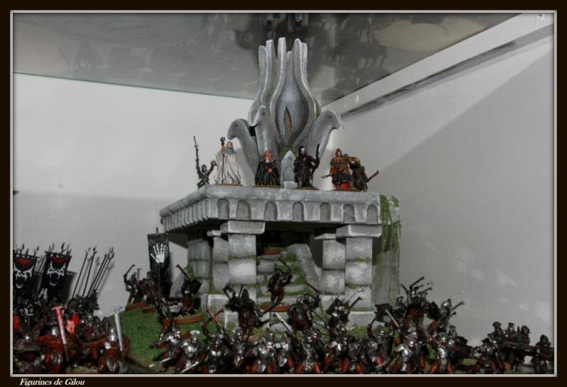 Amon hen Img_7011