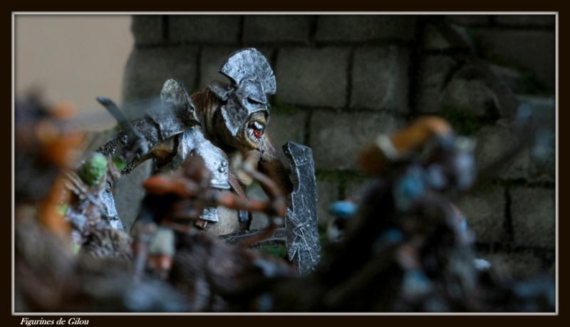 galerie d'Isengard Img_7567