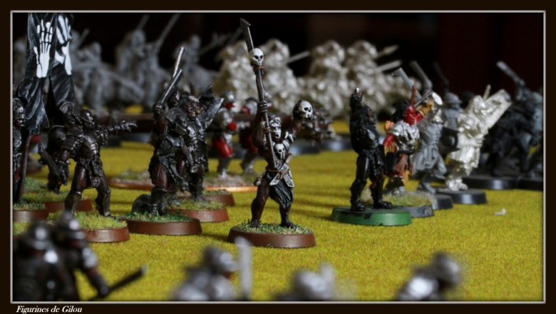 galerie d'Isengard Img_7569