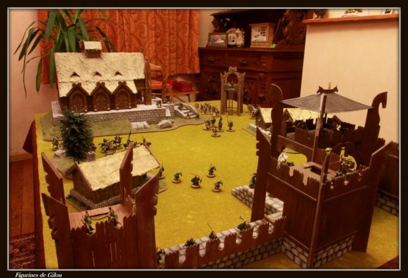 Tuto maison du Rohan - Page 3 Img_7933