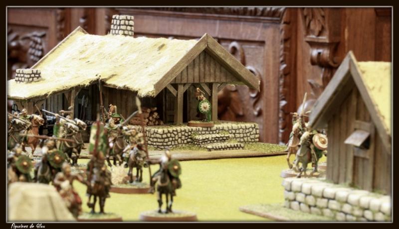 Tuto maison du Rohan - Page 3 Img_7938