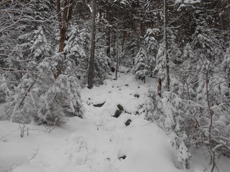 Metalheads who Hike Trail210