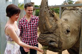 Le regard - Page 2 Rhino-10