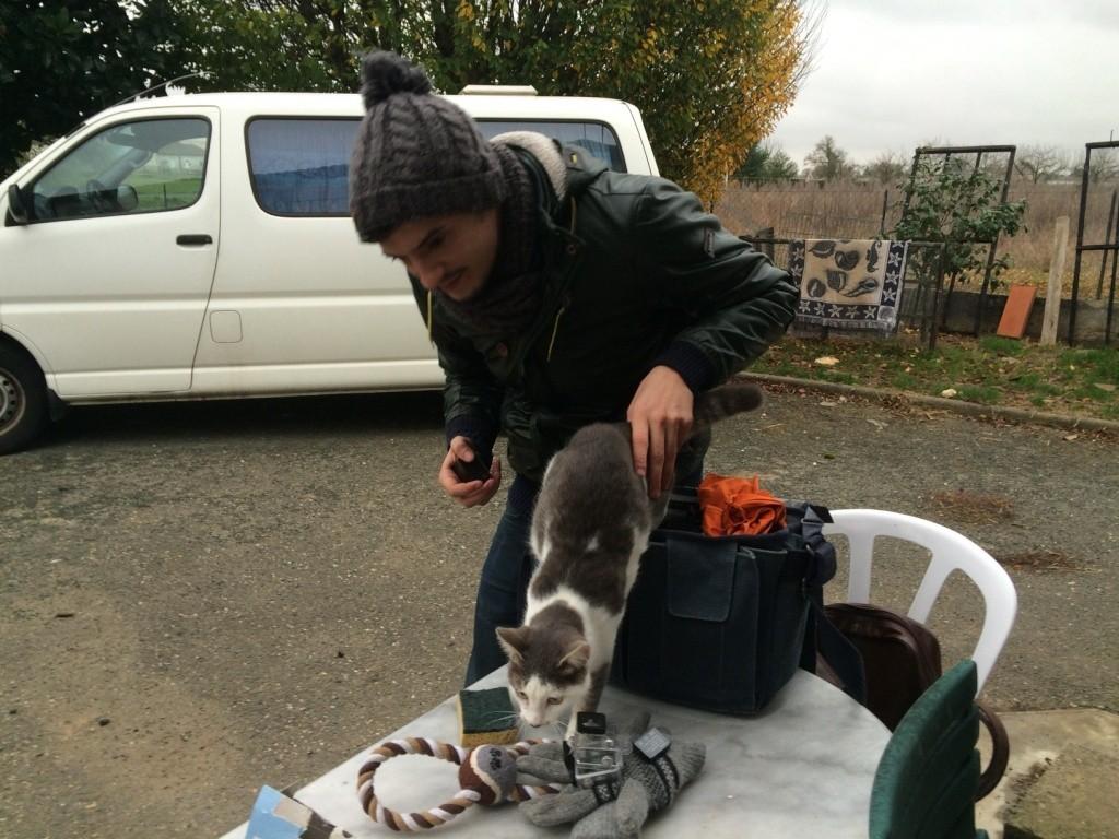 Casting Pub TV recherche chiens et chats - Page 8 Img_3811