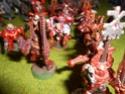Vente Armées 40K Dscn0124