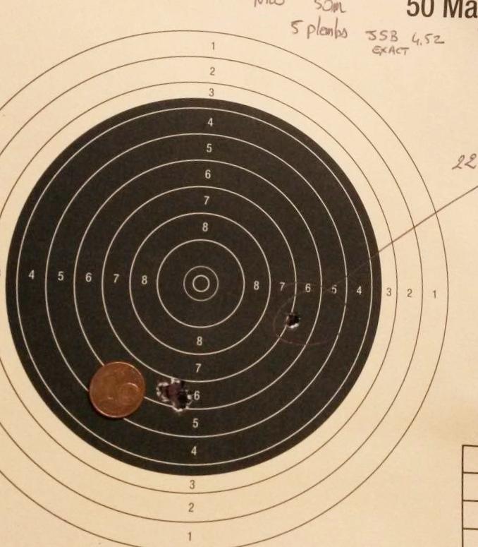Tir de précision avec carabine plomb - Page 2 20141110
