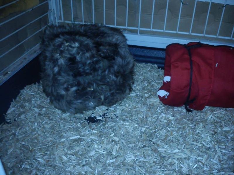 petit dodo fait maison pour ti BUENO 10343410