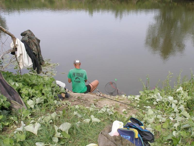 Донка-2014 год.  P1018926