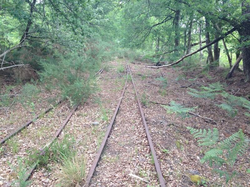 Vestige de la voie entre Labouheyre et Marquèze. Iphone12