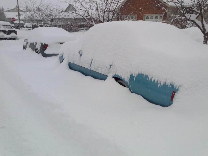SNOW SNOW SNOW Cam00216
