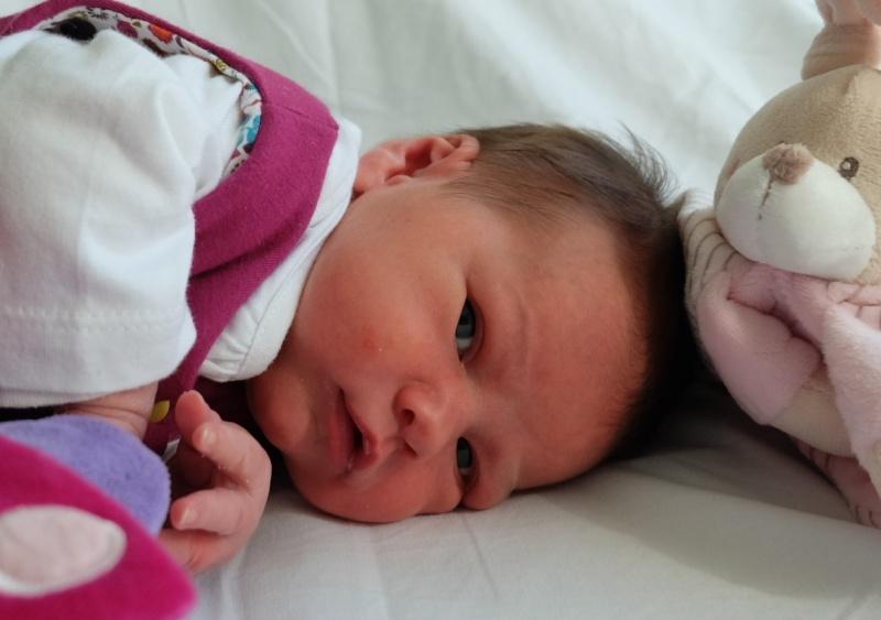 demande bouteilles naissance bébé 2010