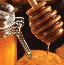تعريف عسل النحل 5592_511