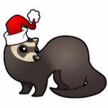 Noël des animaux à la SPA WE du 6/7 décembre 2014 Furet_10
