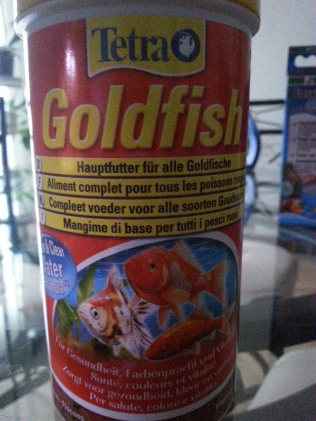 presentation de mon aquarium (debutant)60l eau douce  20141133
