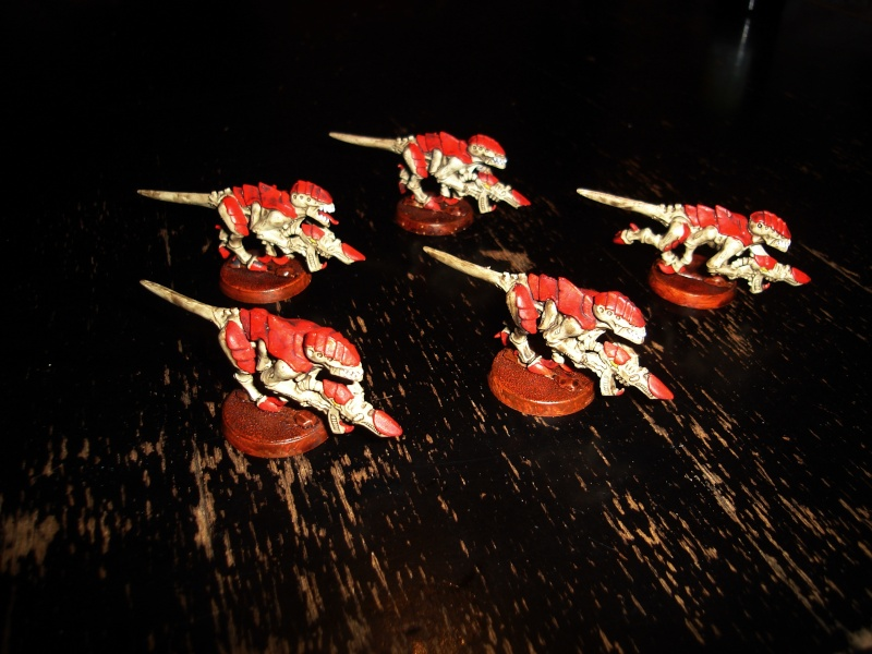 La flotte-ruche Kraken d'Huron Sombrecoeur Dsc00012
