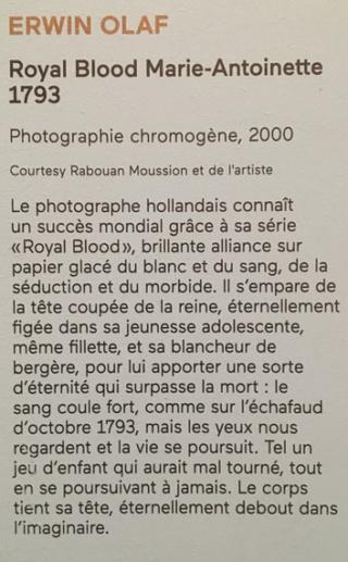 Conciergerie : Marie-Antoinette métamorphoses d'une image Captu844
