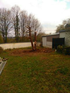 mon 421 forestier - Page 8 15555311