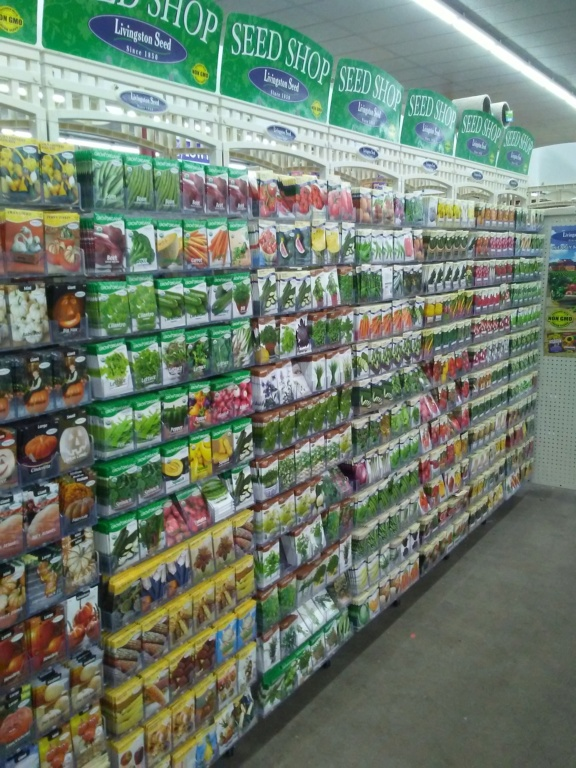 "Did someone say ""Seeds are out now""... WHAT..?? 01101911"