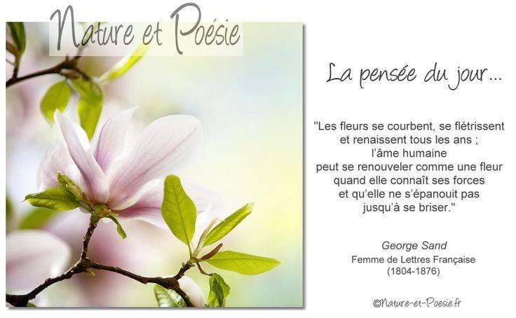 """Le coin des """"pensées""""  - Page 5 13680510"""