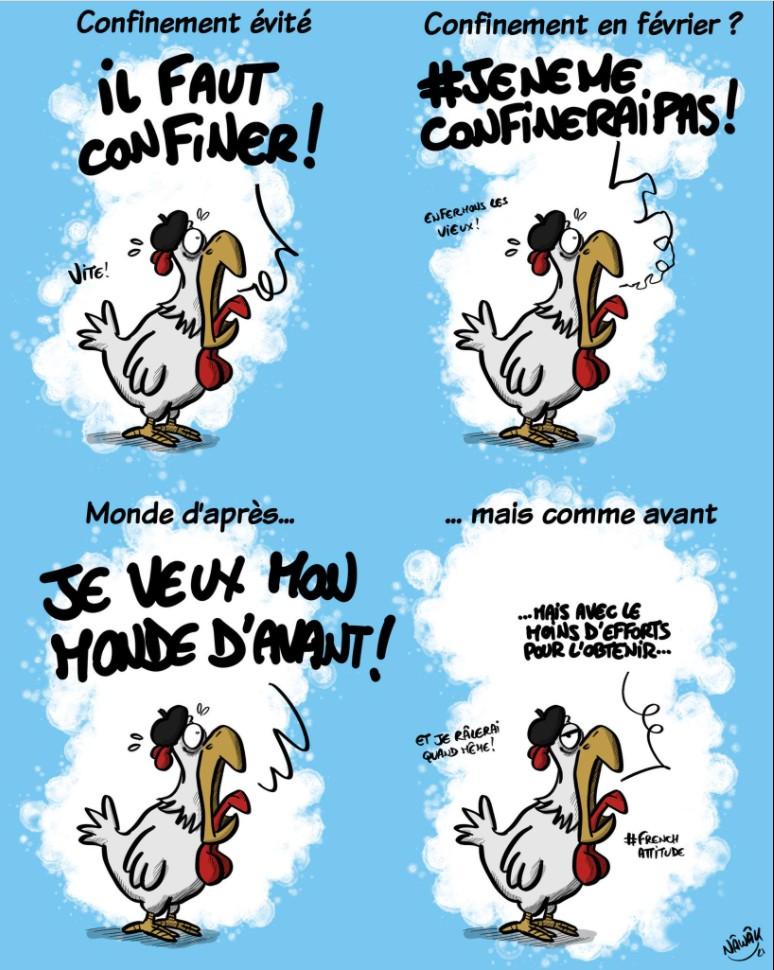 Le coq français Franca11