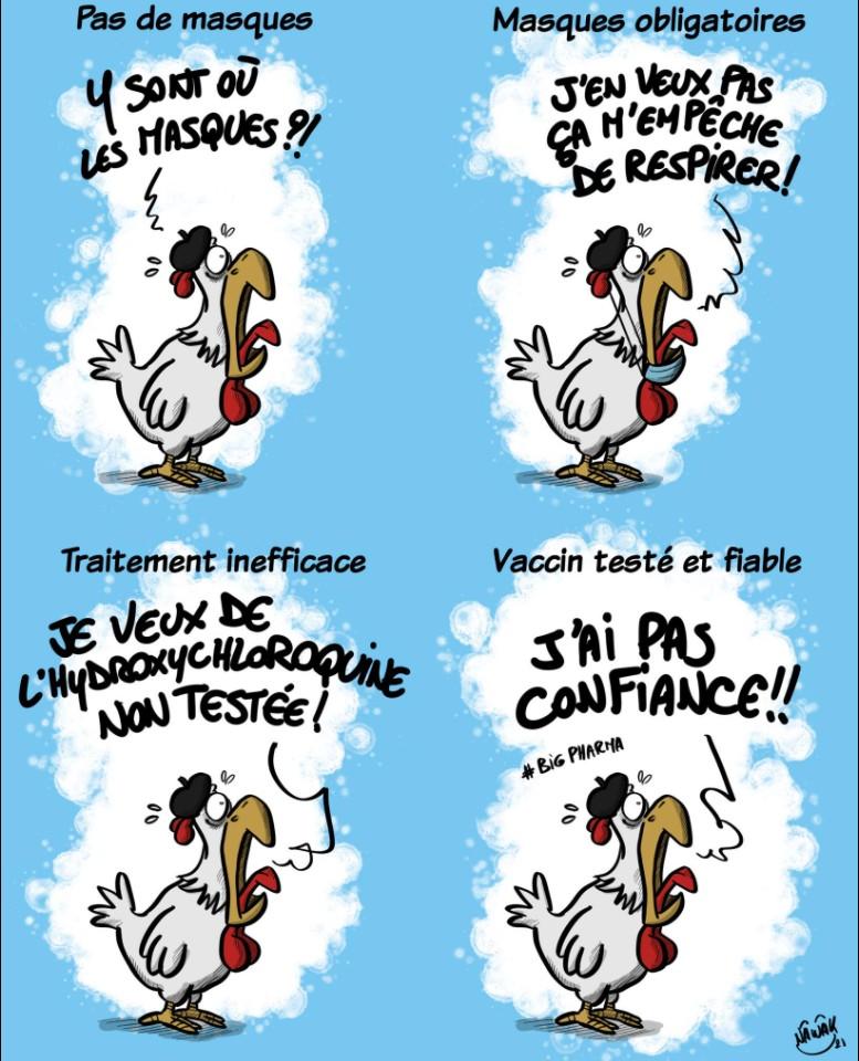 Le coq français Franza10