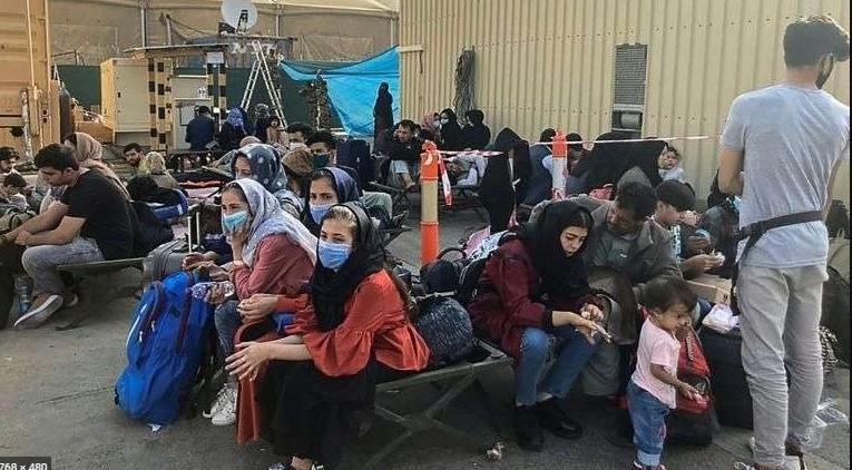 urgence réfugiés - Page 4 Kaboul10