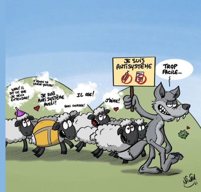 Manifs antivax Mouton11