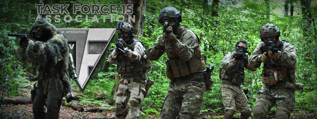 Task Force 15