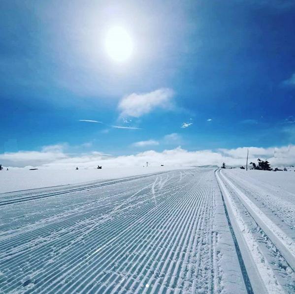 Жизнь лыжно-межсезонная 2020 3103