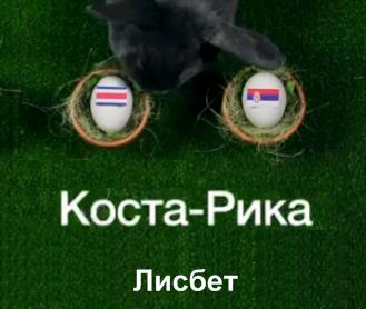 Животные-оракулы на ЧМ-2018 по футболу - Страница 3 E12