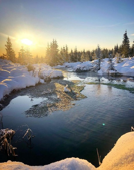 Sesongstart Skiskyting / Sjusjøen  - Страница 11 U17