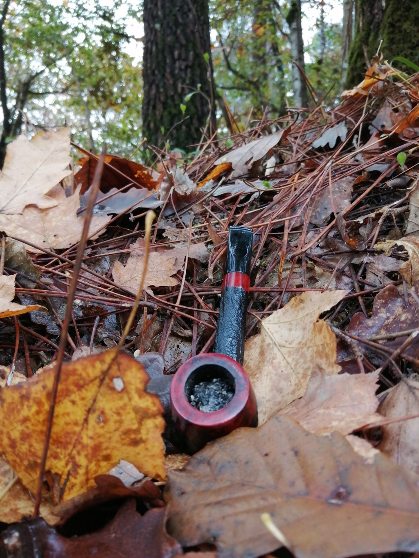 Le 31 octobre – À la saint Quentin, pipe et paille dans la bouche du pantin !  Img_2016