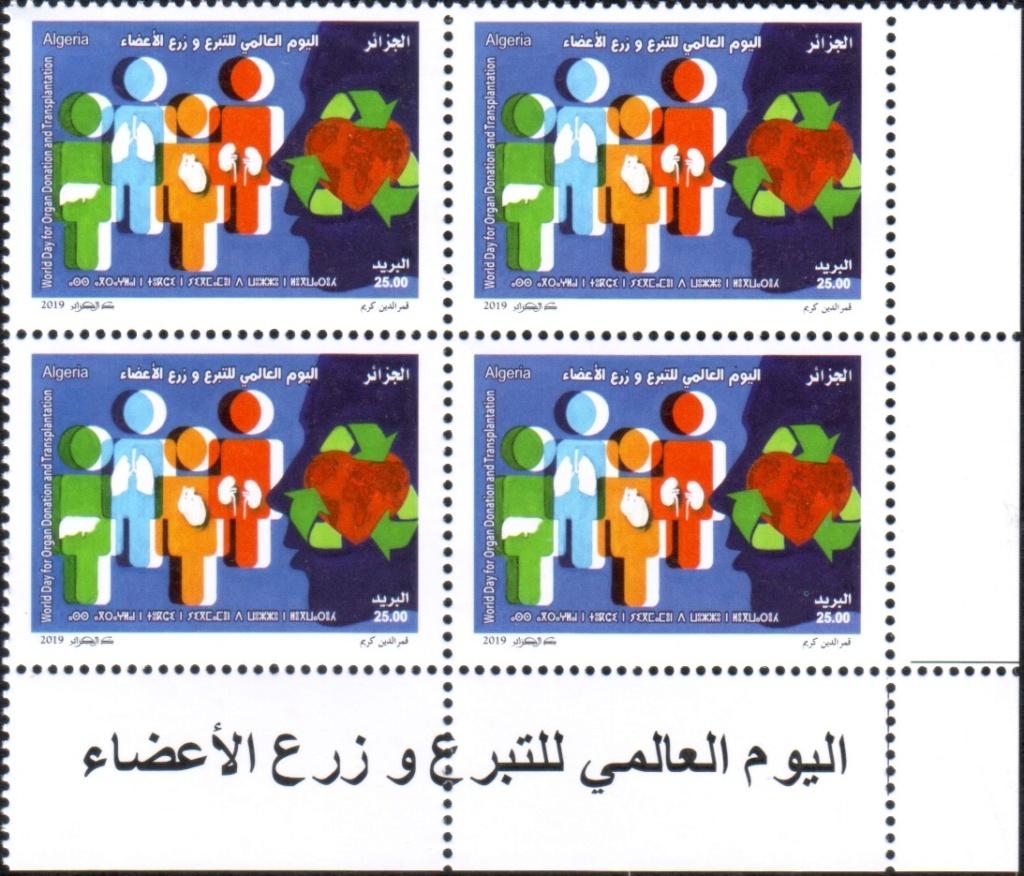Emission N° 13 - Journée mondiale du don d'organes et de la greffe. Sans_133