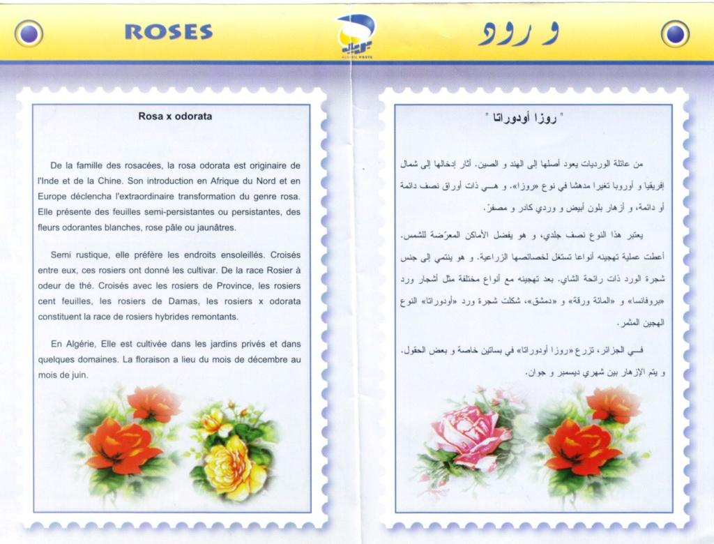 Mon amie la rose. - Page 3 Sans_t43