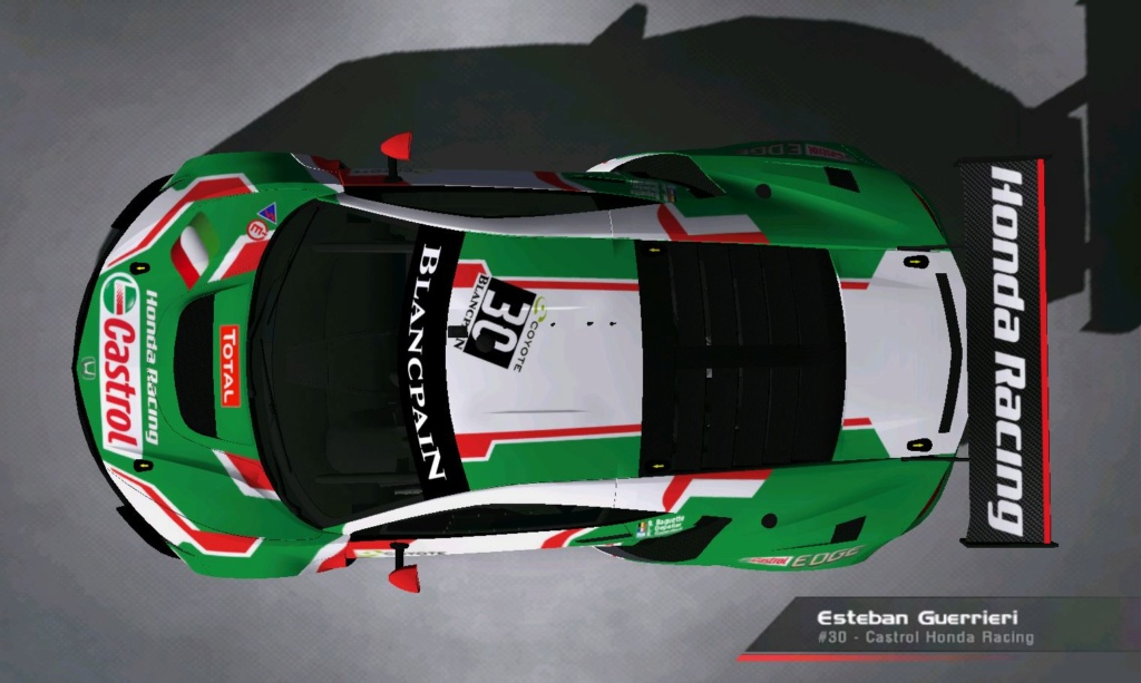 (DELETED) Acura NSX GT3 - Page 12 Castro15