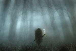 «Ежик в тумане»: апокрифическая мифология детской сказки (Автор Андрей Демкин) -jppcf10