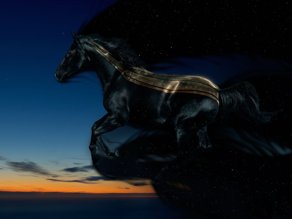Скачка на небесном коне Cry7jb10
