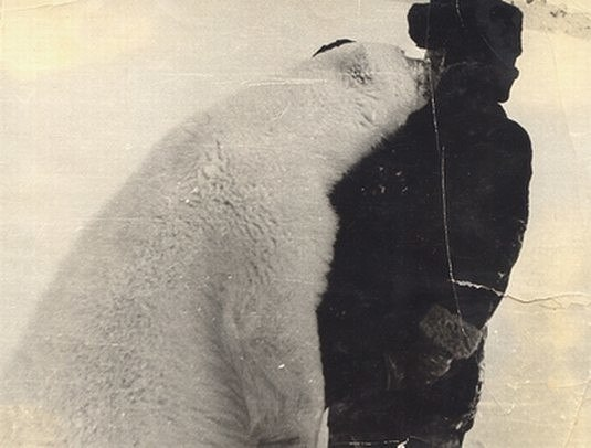 Белые медведи на фото с человеком Fbugav10