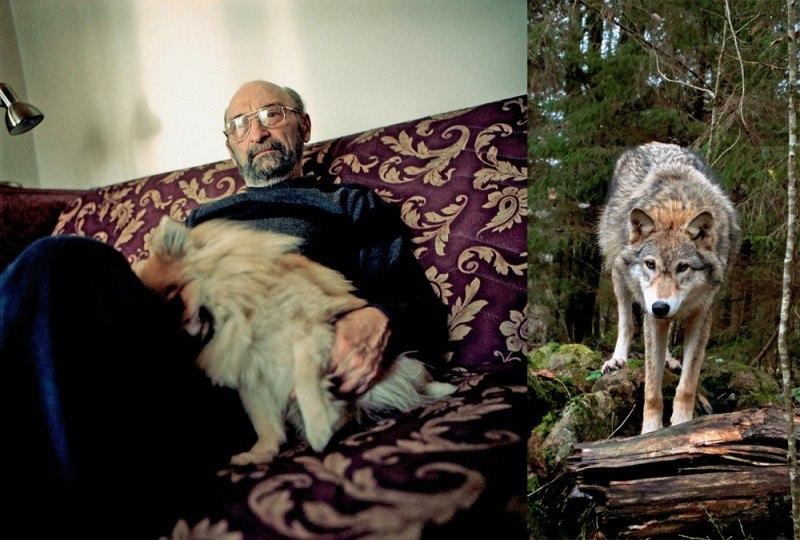 Ясон Бадридзе - о том, как выть по-волчьи, чтобы понять человека. Mbblrs10