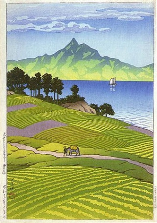 Aux champs de millet [PV Yasei Akane] Summer10