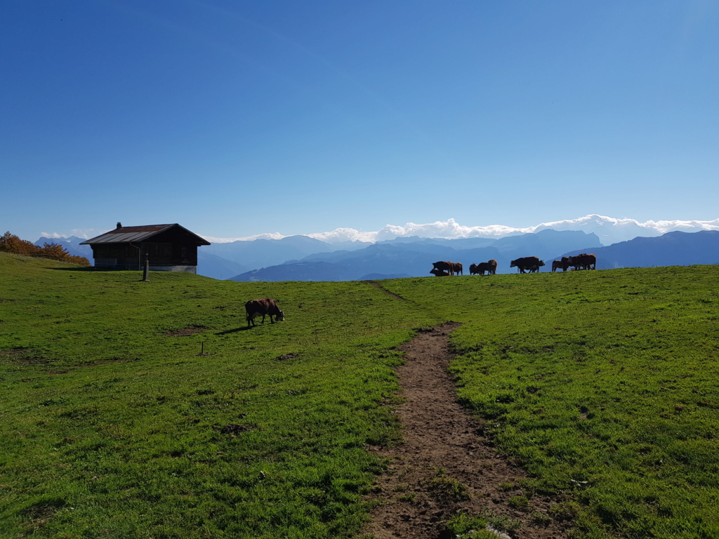 Sortie Alpes Vols Randdo 20181015
