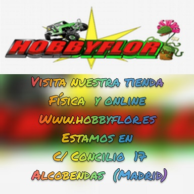 Hobbyflor.es - Ultimas Novedades y ofertas - Página 2 -510