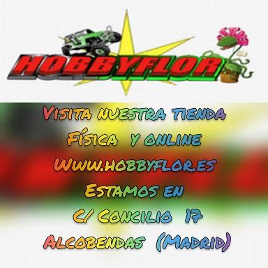 Hobbyflor.es - Ultimas Novedades y ofertas - Página 2 -511