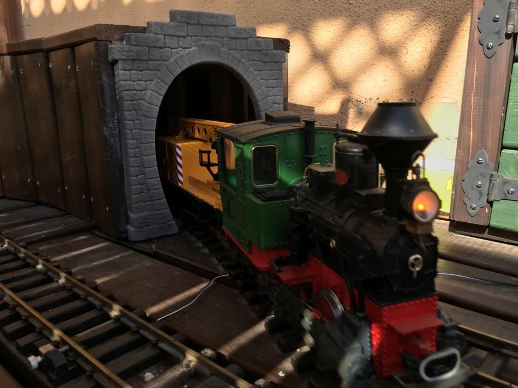 El tren de la Tarima de Pontos Img_6810