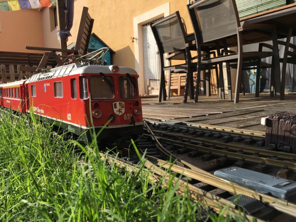 El tren de la Tarima de Pontos Img_7410